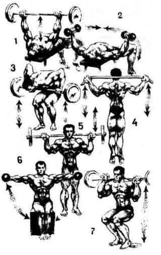Пример 4: Программа тренировок