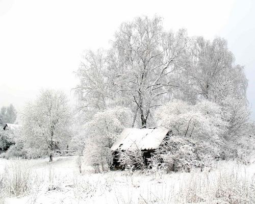 Фото зима, снег.