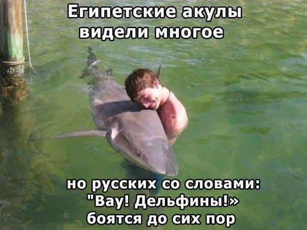 Берегите опасных животных