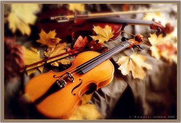 Lady-Hit (Леди Шлягер)1 часть Скрипка, альт, аккордеон скрипка и аккордеон аккордеон музыка аккордеон скрипка музыка.
