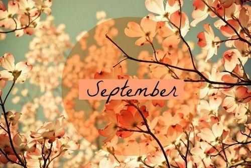 Autumn time ... 2j62vikl7ys