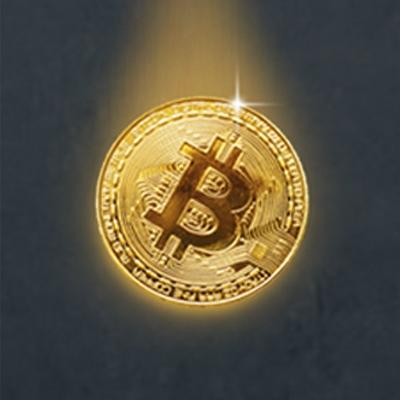 Интернет-ресурс www.brazik.net – приобретение биткоинов по максимально выгодному для пользователя курсу