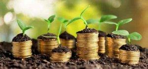 Превосходный вариант достижения финансовой свободы – это работа в глобальной сети