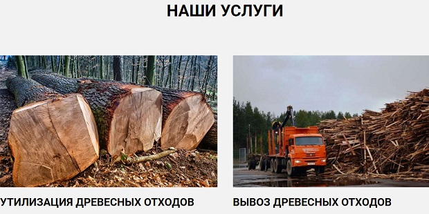 утилизация древесных отходов chistotaplus.com