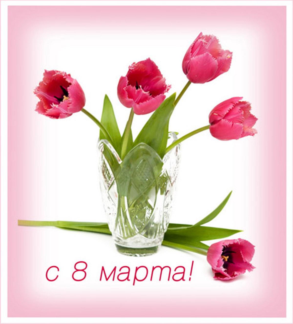 Дорогие женщины, девушки и девочки! Поздравляем Вас с 8 марта